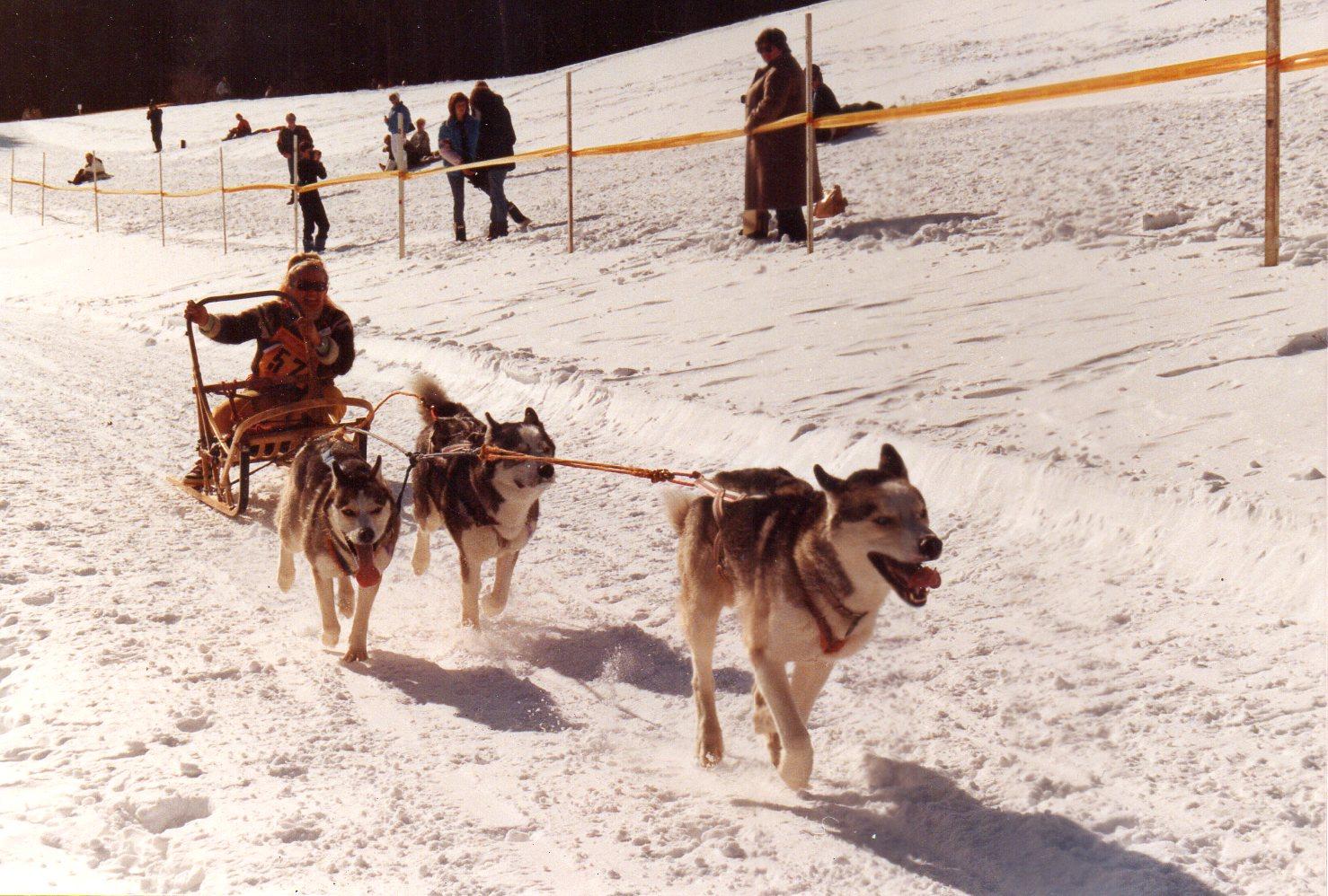 toodtmoos 1985 CE
