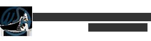 Wsa logo 333